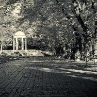 Осенний парк :: Сергей Шруба