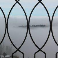 Загадочное утро :: Светлана Попова