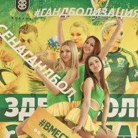 Группа поддержки Queensband :: Андрей Майоров