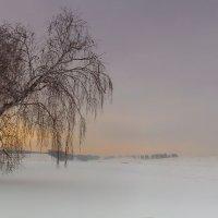 Туда, где на снегоходе только 2 :: Сергей Жуков