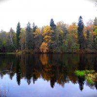 Осень :: Антонина Гугаева