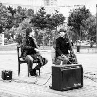 Музыкальный диалог :: Светлана Шмелева