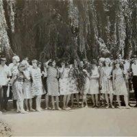 В Никитском ботаническом саду. 1967г. :: Светлана Лысенко