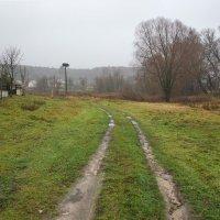 Подъезжая к селу :: Сергей Тарабара