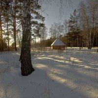 В лесной глуши :: Сергей Жуков