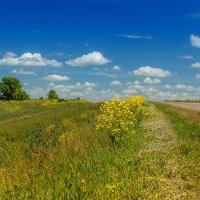 Небо и земля... :: Евгений Голубев
