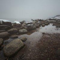 Осень на Балтике :: Дима Хессе
