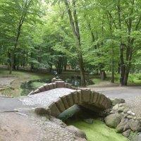 Каменный мостик :: юрий Амосов