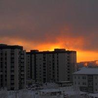 Зимний Сургут :: Виктор Коршунов