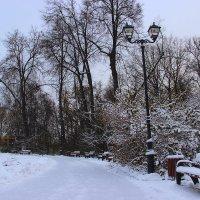 зимний парк :: Анна -