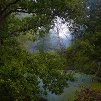 Свет в оконце... :: Roman Lunin