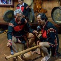 Концерт племени Мнонги :: Илья Шипилов