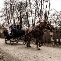 Свадьба с ветерком... :: Андрей Головкин