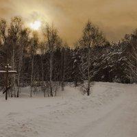 По зимней дороге :: Сергей Жуков