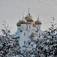 Белый снег, золотые купола :: Николай Белавин
