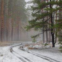 Осени весеннее дыхание... :: Лесо-Вед (Баранов)