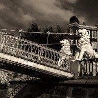 У Львиного моста :: Eugene *