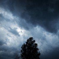 Storm :: Maggie Aidan