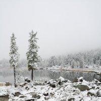 пейзаж-17 :: Галина Щербакова