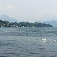 Люцерн, озеро в Швейцарии; более распространённое название ≈ Фирвальдштетское озеро :: Елена Павлова (Смолова)