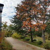 Осень на Историческом бульваре :: Виктория Калицева