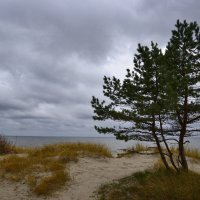 Балтика :: Дмитрий Близнюченко