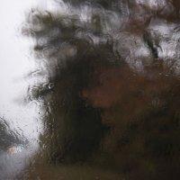 Дождь-художник :: Larisa Berezhnaya