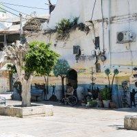 Дворики Акко:  Графити :: Aleks Ben Israel