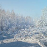 Мороз и солнце... :: Kassen Kussulbaev