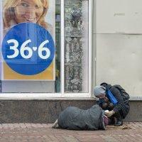 Про участие и сострадание :: Александр Степовой