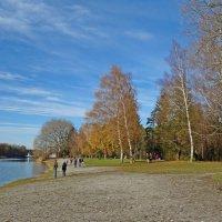 Солнечный ноябрьский денёк на озере... :: Galina Dzubina
