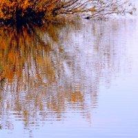 Осеннее  зеркало.... :: Валерия  Полещикова