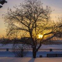 Зимний закат :: Станислав