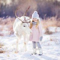 Рождественская сказка :: Анастасия Кочеткова