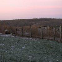 Морозное безмятежное утро в Селе :: Ильгам Кильдеев