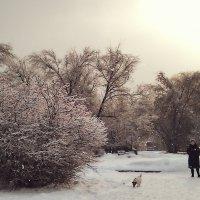 Прогулка в парке :: Денис Масленников