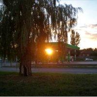 Закат :: Татьяна Пальчикова
