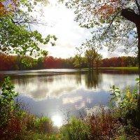 Озеро Лесное в лучах осеннего солнца :: Маргарита Батырева