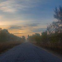 Дорога через туман :: Artem Zelenyuk