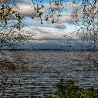 Меж деревьями :: Valerii Ivanov