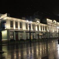 Музей им. Врубеля :: Гулько Т