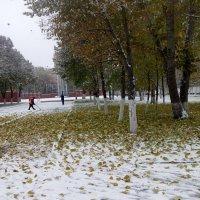 Доллары на снегу :: Александр Алексеев