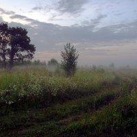 Рассвет в конце июля :: Валентин Котляров