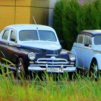 Старые авто... :: Галина Полина