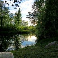Летний вечер на речке :: Светлана