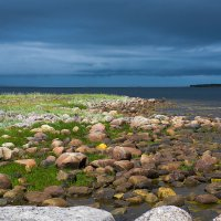Хмурое утро на Белом море. :: Николай