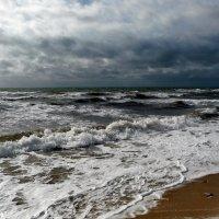 Так начинается шторм... :: Ольга Голубева
