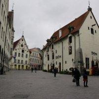 по улицам  старого Таллинна :: Marina Tamm