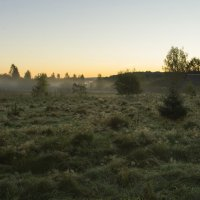 Туман :: Федор Пшеничный