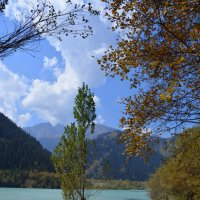 Озеро Иссык. :: Anna Gornostayeva